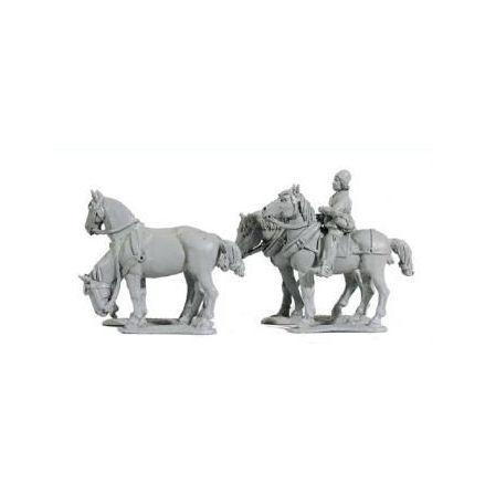 Wagon horse teams