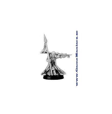 MORTRHON WIDOWSPEAR, FIR BOLG CHAMPION (1 figur per förpackning)