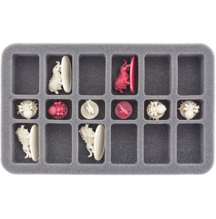 HS035DC02 foam tray for Descent: Journeys in the Dark 2nd Ed - 18 miniatures