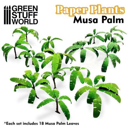 Paper Plants - Musa Trees