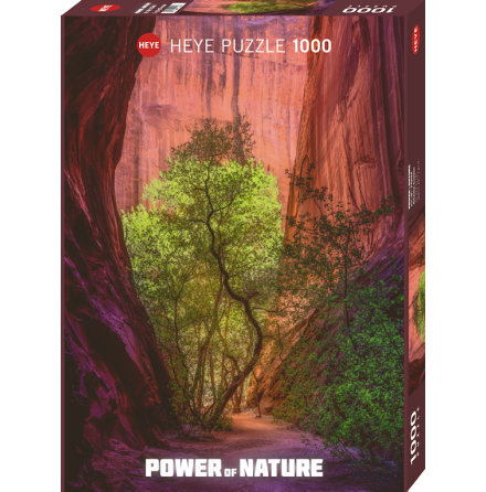 Power of Nature: Singing Canyon (1000 pieces)