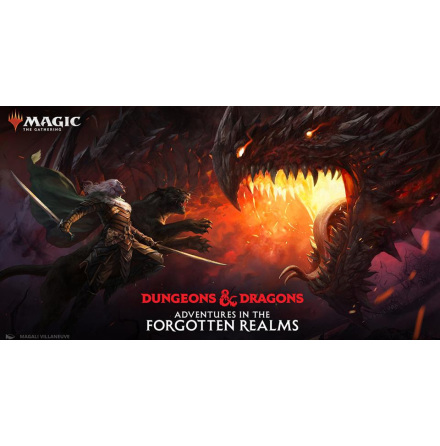 Magic The Gathering Adventures in the Forgotten Realms Gift Bundle